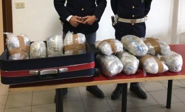 Scoperto traffico internazionale di droga dalla Spagna con base a Firenze e Bologna (VIDEO)