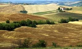 La Toscana si conferma regina dell'agriturismo con una  domanda cresciuta del 31%
