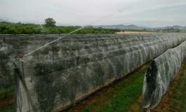 Emergenza siccità: il lavoro dei Consorzi fra irrigazione e prevenzione