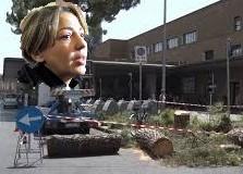 Miriam Amato pronta a depositare l'esposto in procura sul taglio dei pini in piazza stazione