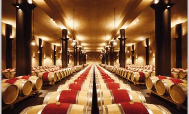 Monteverro, vini nati nella costa d'Argento dalla passione per la terra  di Georg Weber