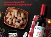 Alla scoperta del Vino di Carmignano: tutti in vigna!